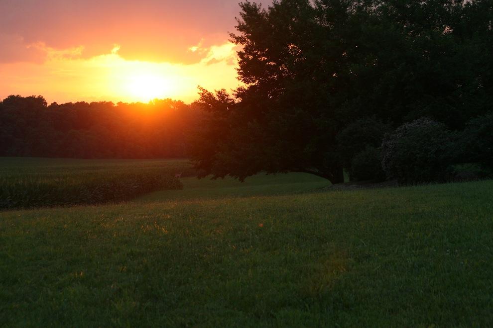 Sunsets 2170: Api di Langit