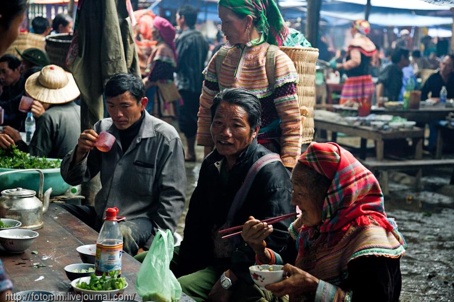 2532 pasar pertanian kolektif di Vietnam Pertambangan