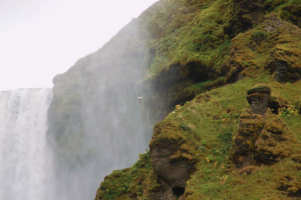4190615643 8712177564 b Скогафосc самый знаменитый водопад Исландии