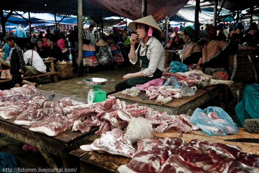 760 pasar pertanian kolektif di Vietnam Pertambangan