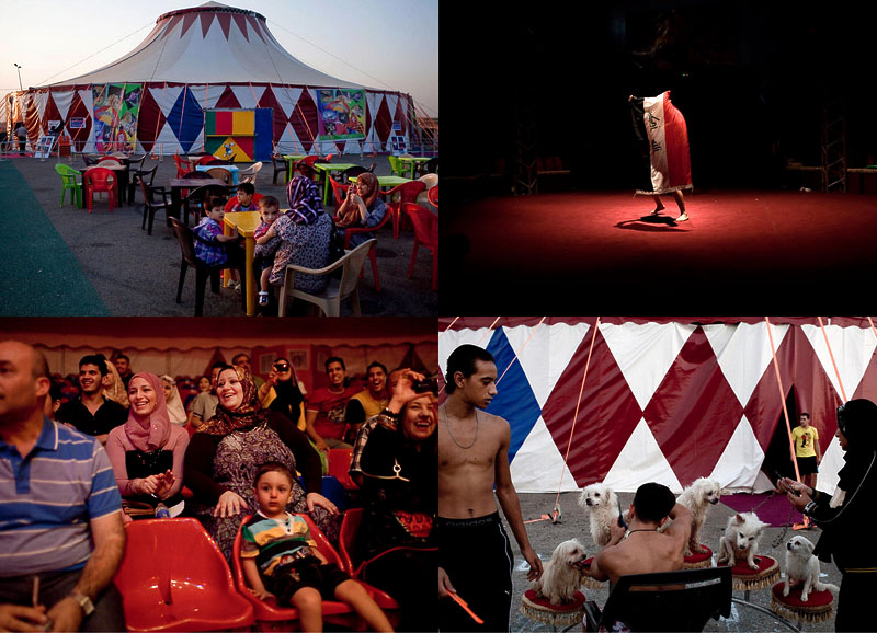 В Багдад вернулся цирк
