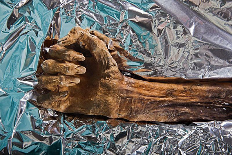 """""""Ледяной человек"""" Эци - найдено тело человека, жившего более 5000 лет назад"""