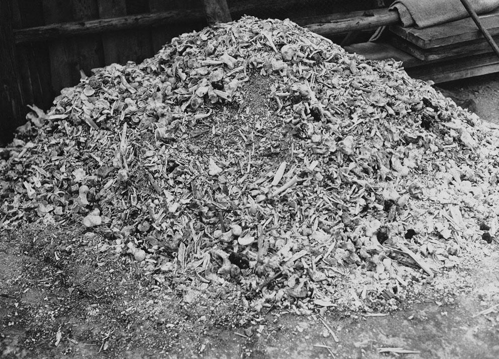 holo19 Вторая мировая война: Холокост (Часть 18)