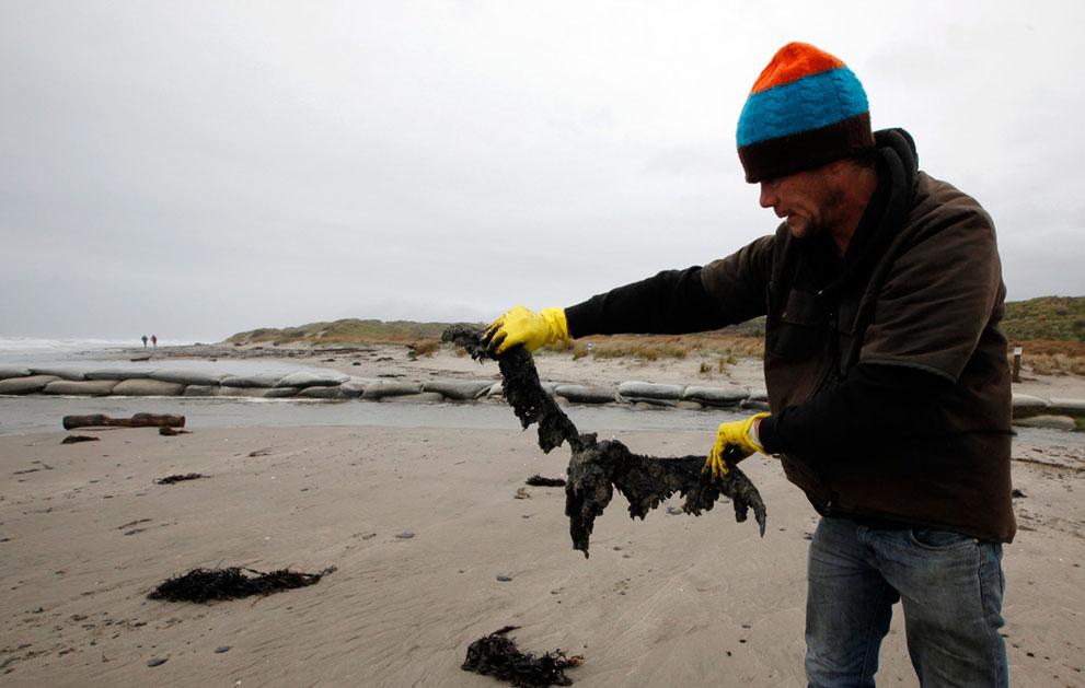 s N22 RTR2SJVM tumpahan minyak di lepas pantai Selandia Baru