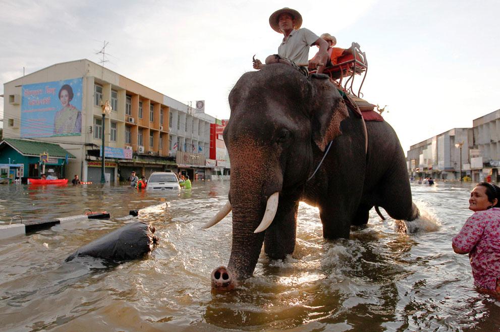 s t16 RTR2SECE banjir di Thailand