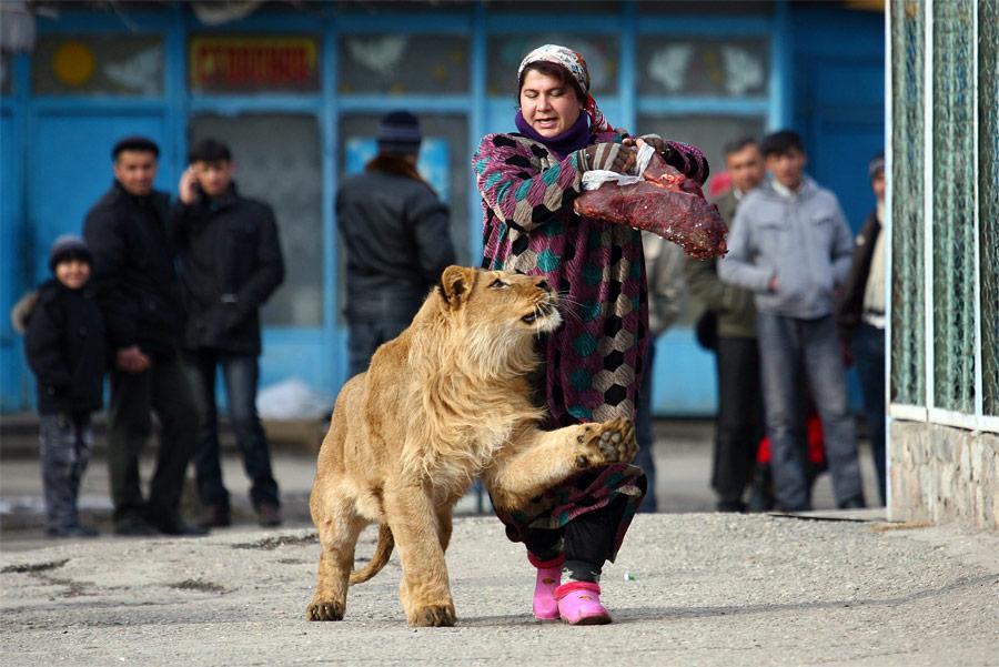 10164 Лучшие снимки Reuters 2011 (часть 1)
