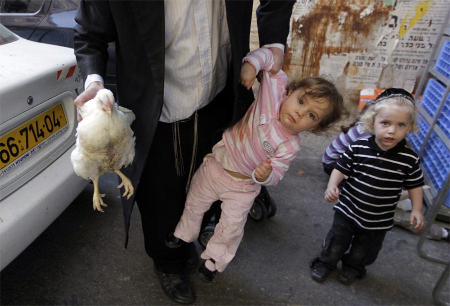19102 Лучшие снимки Reuters 2011 (часть 1)