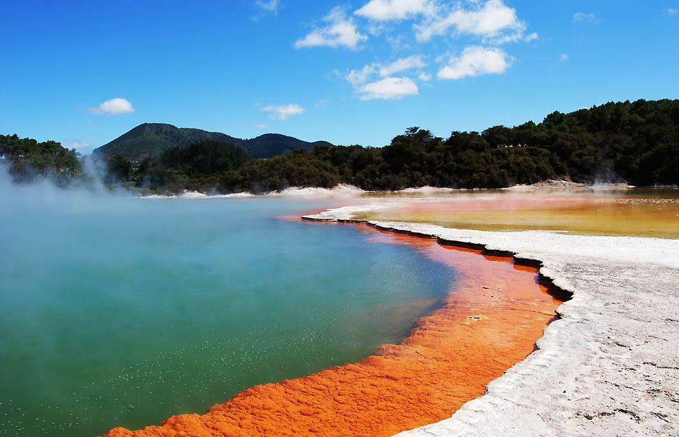«Бассейн с шампанским» в Новой Зеландии