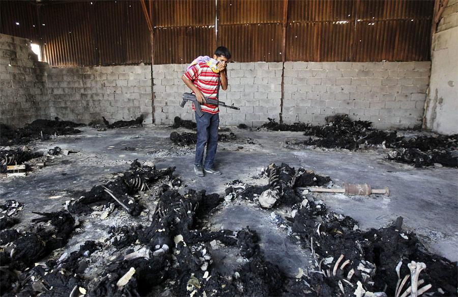 2095 Reuters terbaik gambar di 2011 (Bagian 2)