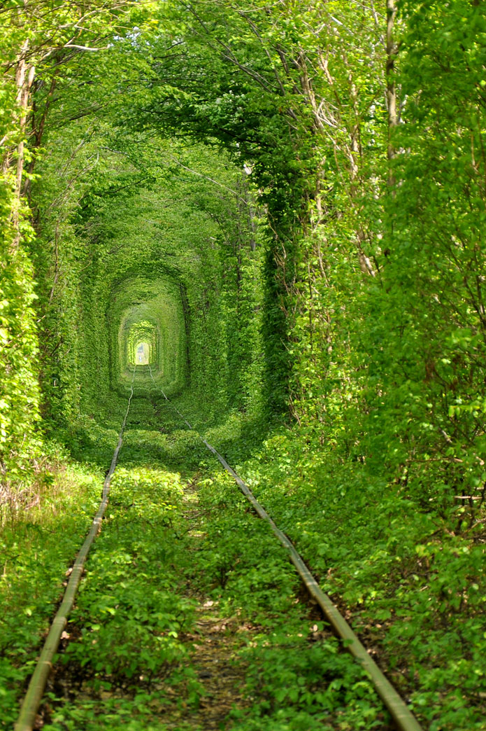 4173 Tunnel of Love