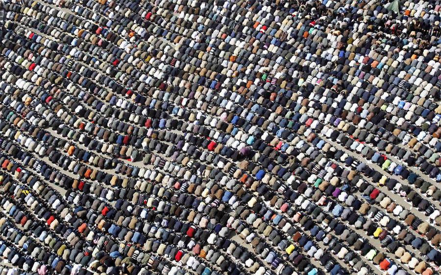 4265 Лучшие снимки Reuters 2011 (часть 1)