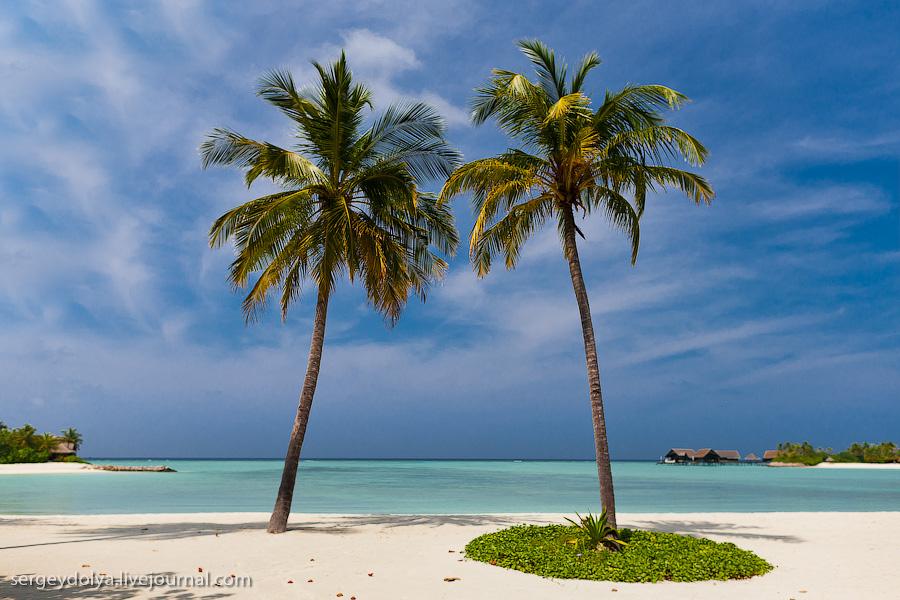 5156 Лучший в мире курортный отель на Мальдивах