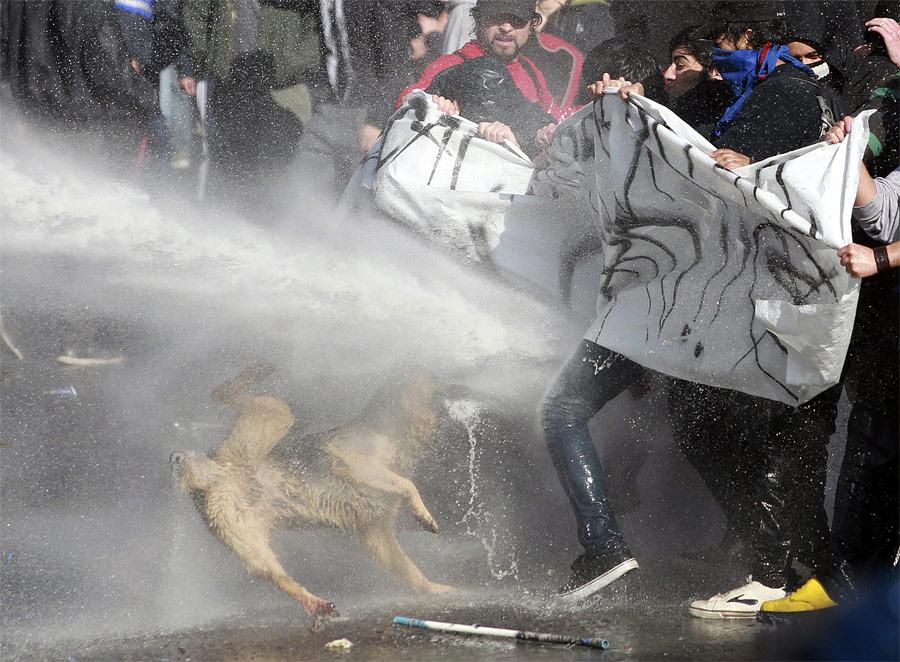 9179 Reuters terbaik gambar di 2011 (Bagian 2)