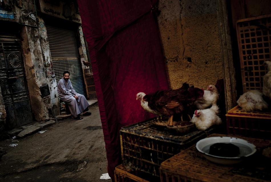 egypt12 krisis industri pariwisata di Mesir