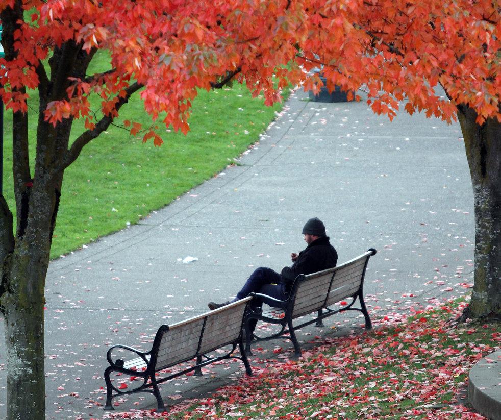 http://bigpicture.ru/wp-content/uploads/2011/11/fall_foliage_07.jpg