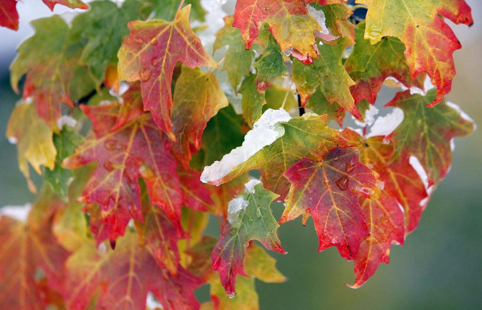 http://bigpicture.ru/wp-content/uploads/2011/11/fall_foliage_10.jpg