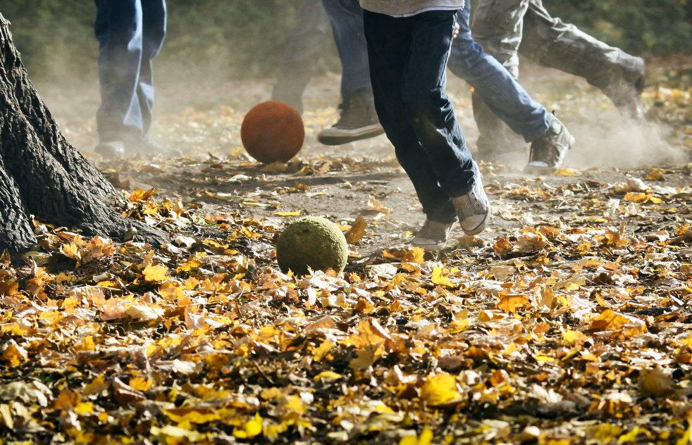 http://bigpicture.ru/wp-content/uploads/2011/11/fall_foliage_22.jpg