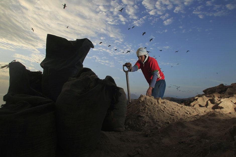 pic33 terbaik foto dari Reuters Oktober