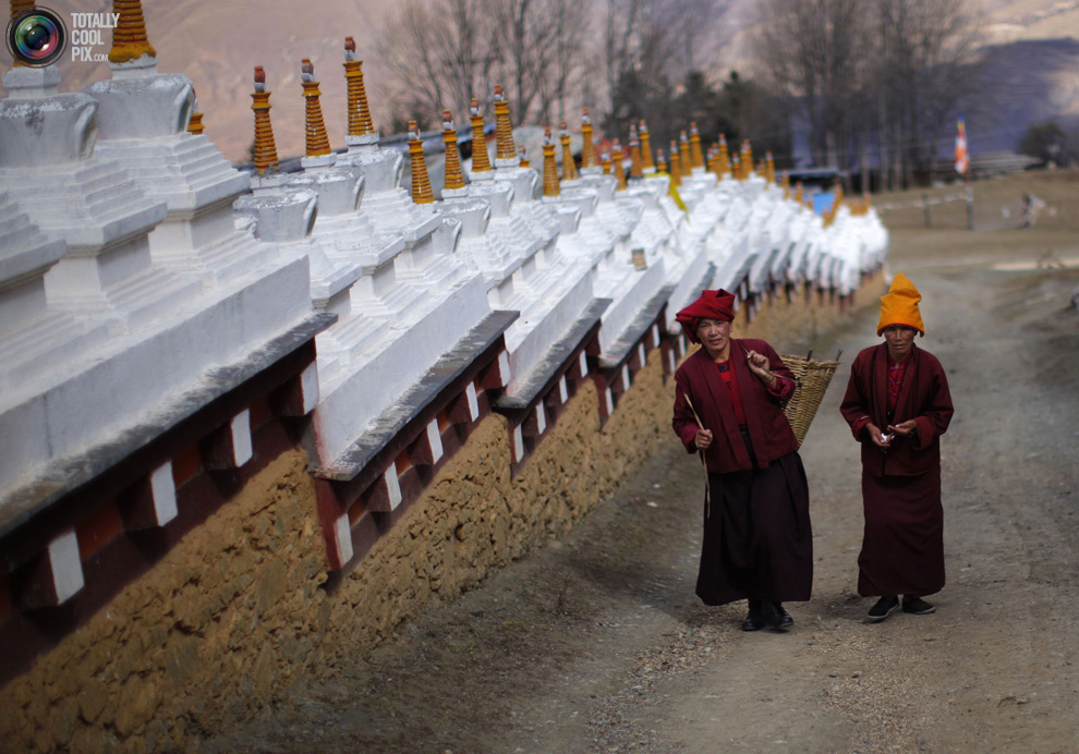 tibet 009 Тибетские монахини