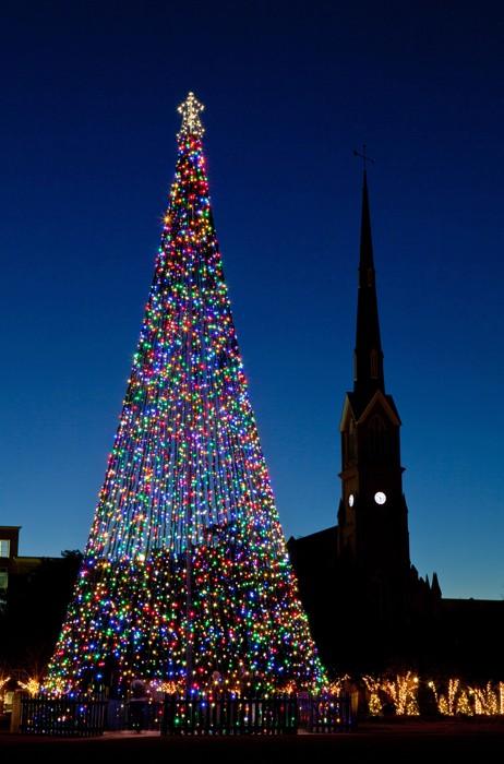 10133 Рождественские елки со всего мира