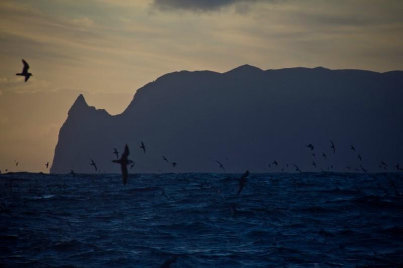 10138 800x533 Остров Тристан да Кунья: Жизнь в центре океана