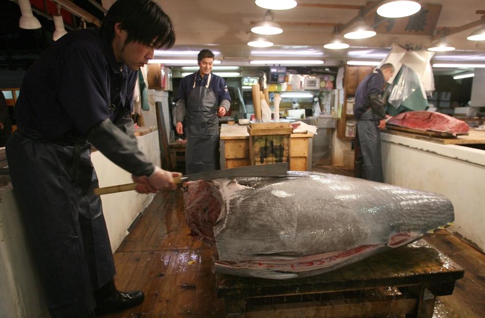 10146 Рыбный рынок Цукидзи