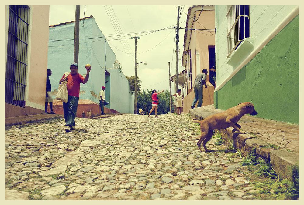 12145 Фотопрогулка по Тринидаду
