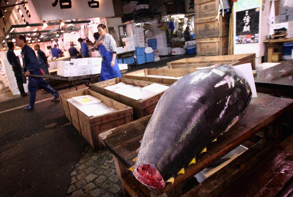 12154 Рыбный рынок Цукидзи