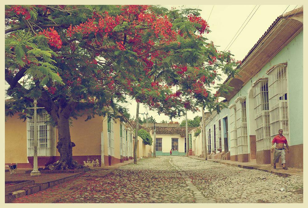 13129 Фотопрогулка по Тринидаду