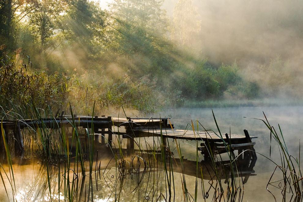 1340 100 изумительных фотографий тумана (часть 2)