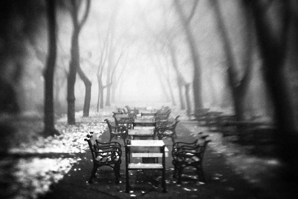 1436 100 изумительных фотографий тумана (часть 2)
