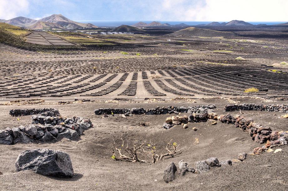 1568 Вулканические виноградники острова Лансароте