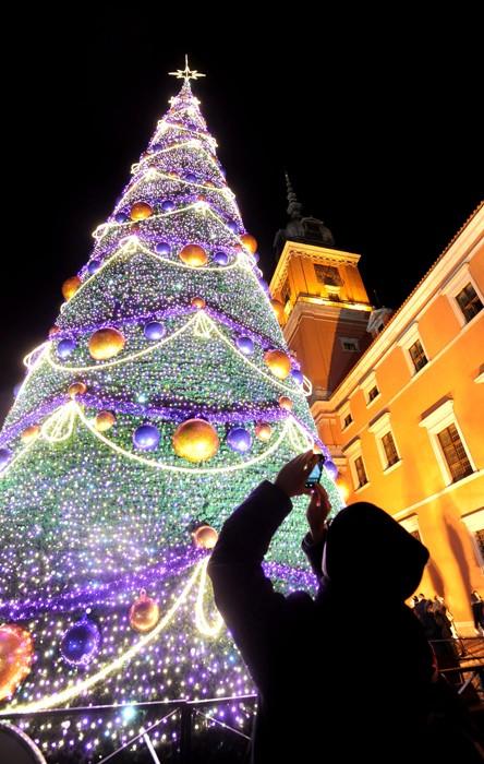 1604 Рождественские елки со всего мира