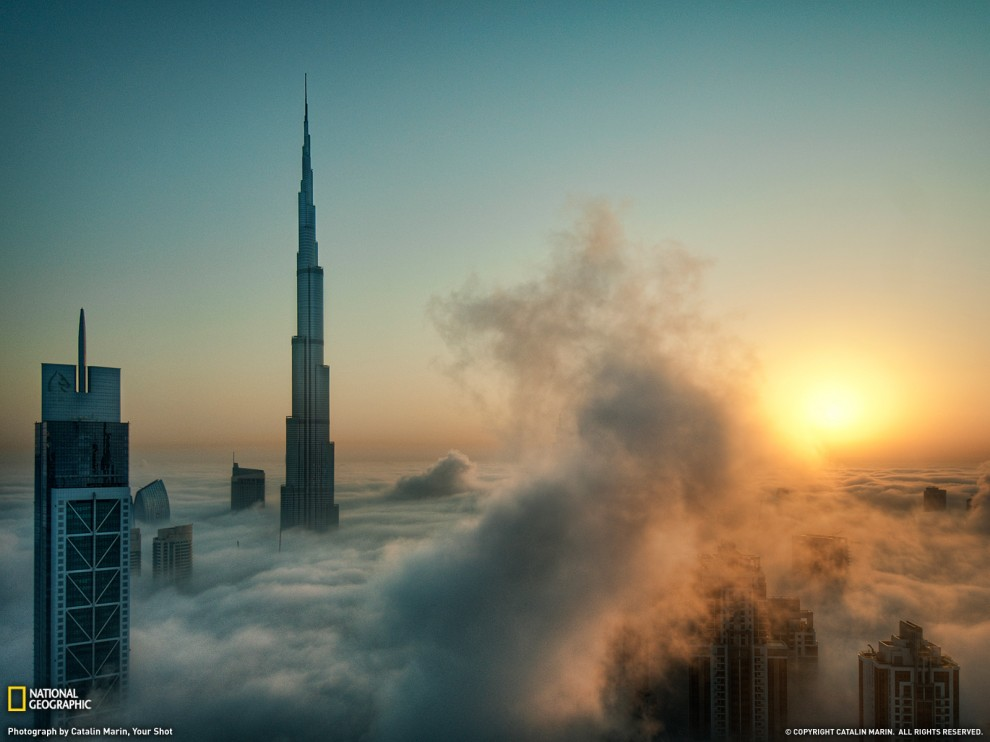 163 990x742 Лучшие фото ноября от National Geographic