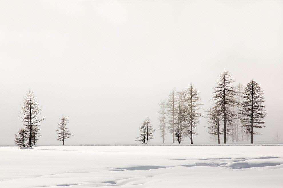 1821 100 изумительных фотографий тумана (часть 2)