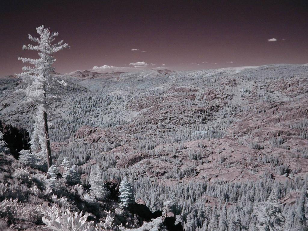 1967 Инфракрасная фотография