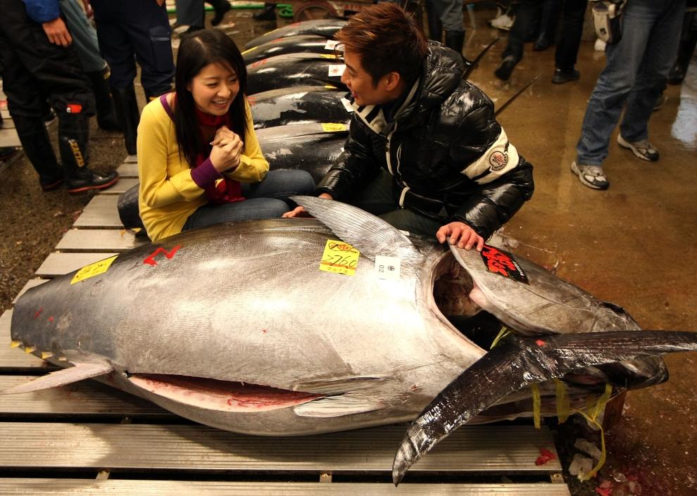 21140 Рыбный рынок Цукидзи