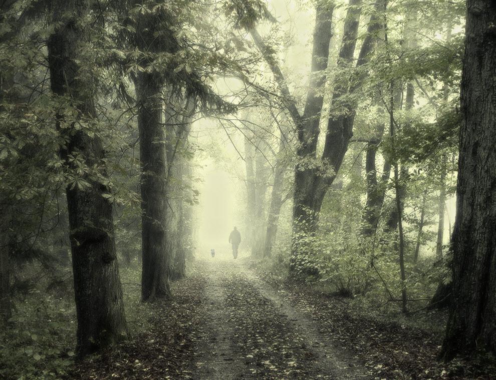 2218 100 изумительных фотографий тумана (часть 2)