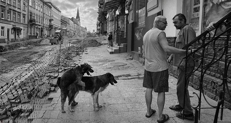 2229 Сцены из российской жизни глазами Александра Петросяна