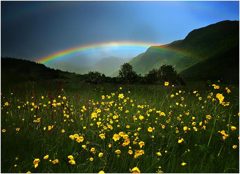 2276 Красоты Норвегии от Йона Колбенсена