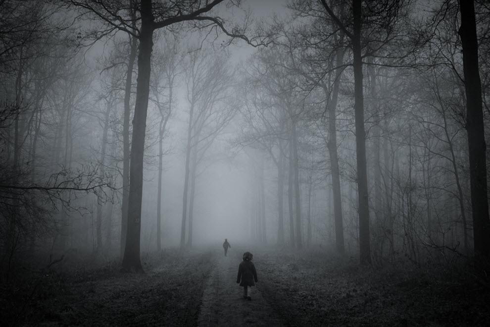 2317 100 изумительных фотографий тумана (часть 2)
