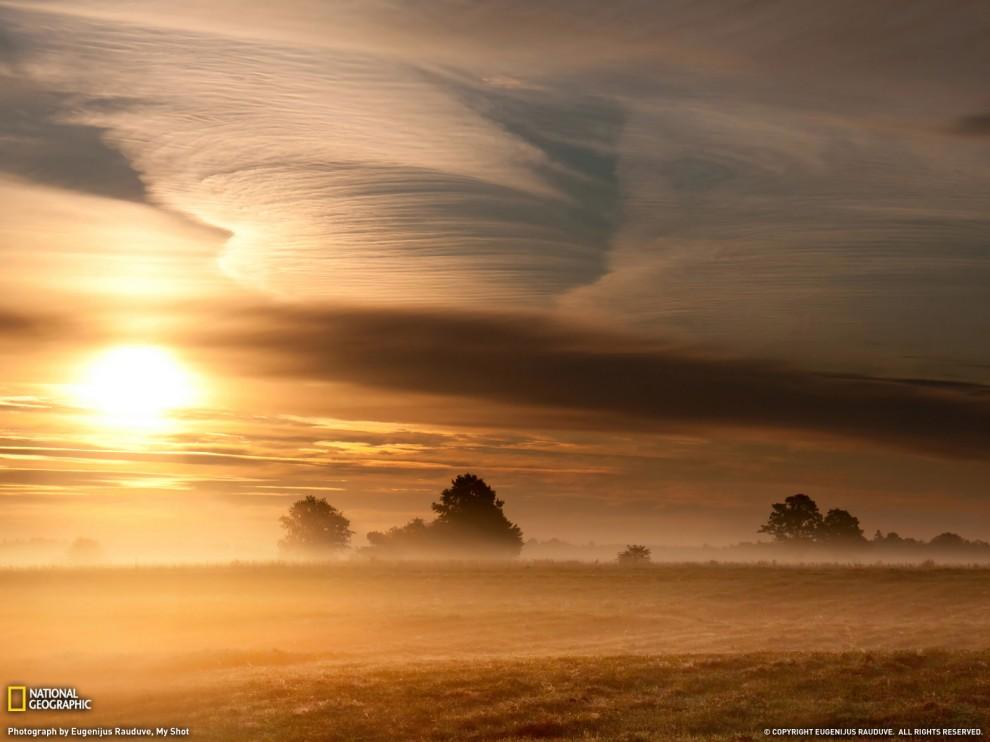 232 990x742 Лучшие фото ноября от National Geographic