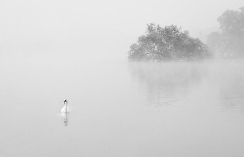 2516 100 изумительных фотографий тумана (часть 2)