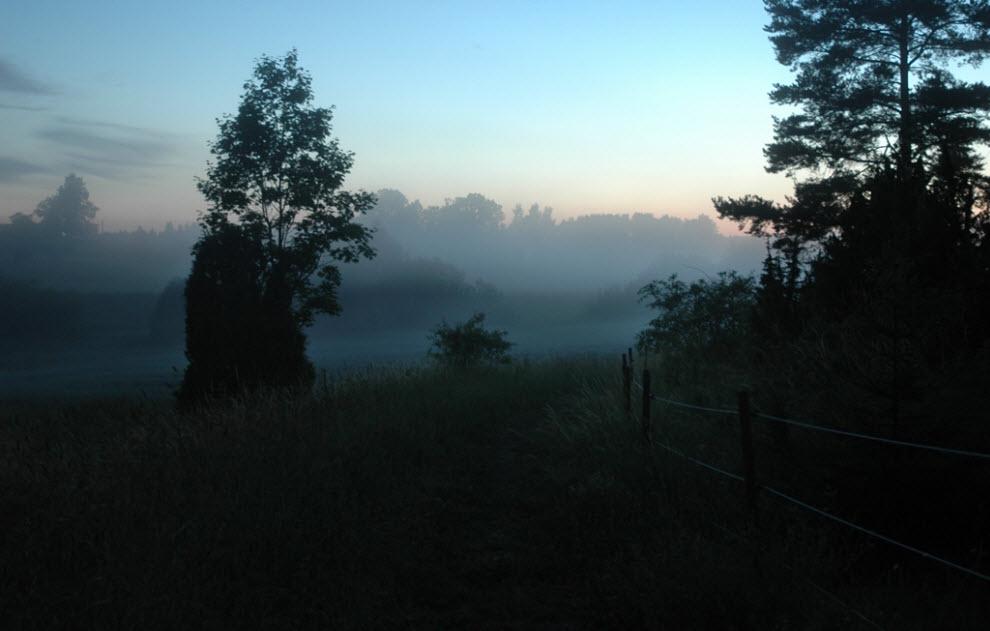 50 дивовижних фотографій туману фото