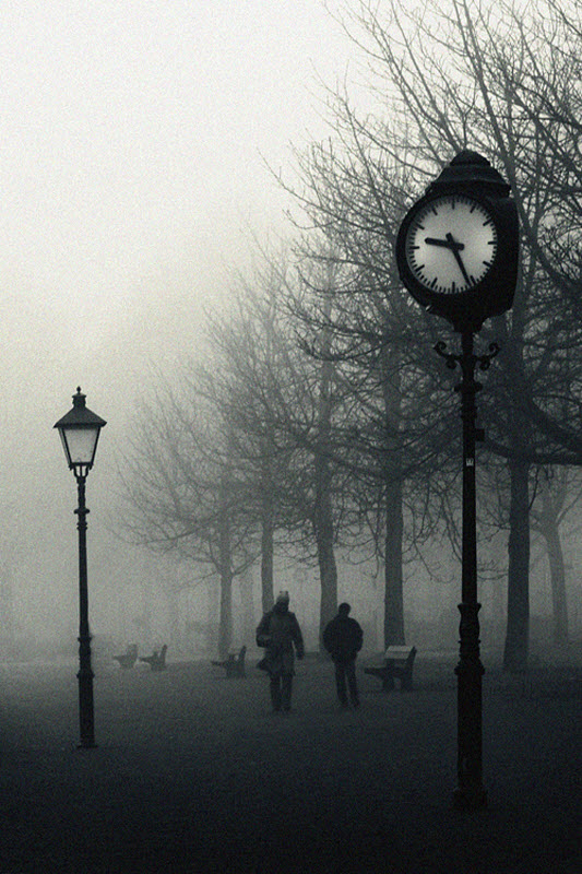 2616 100 изумительных фотографий тумана (часть 2)