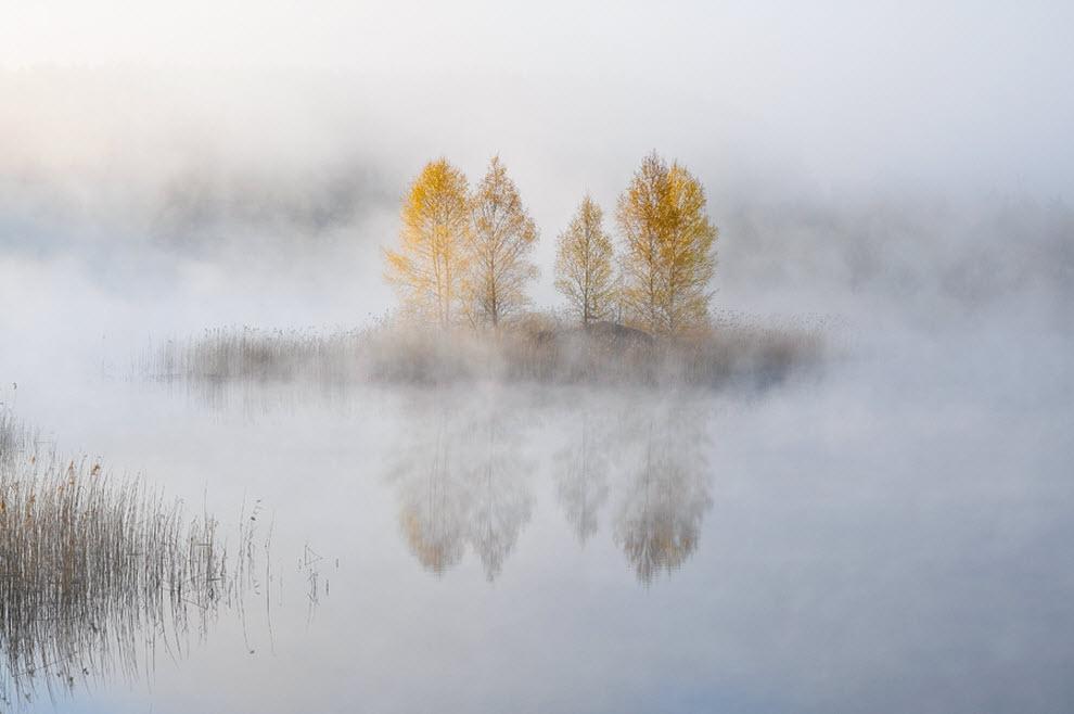 2914 100 изумительных фотографий тумана (часть 2)