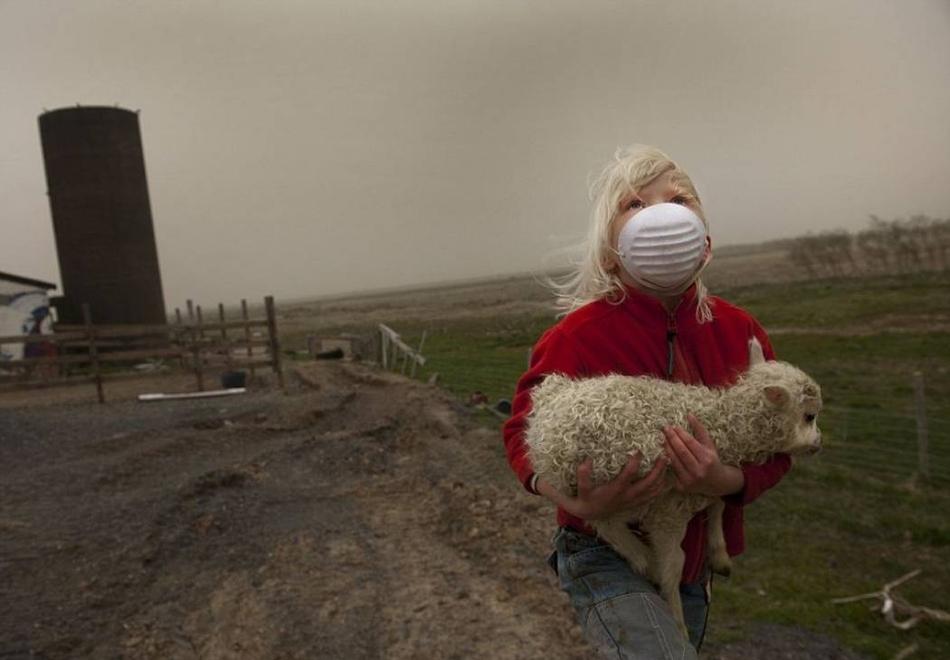 2917 50 лучших фотографий животных за 2011 год