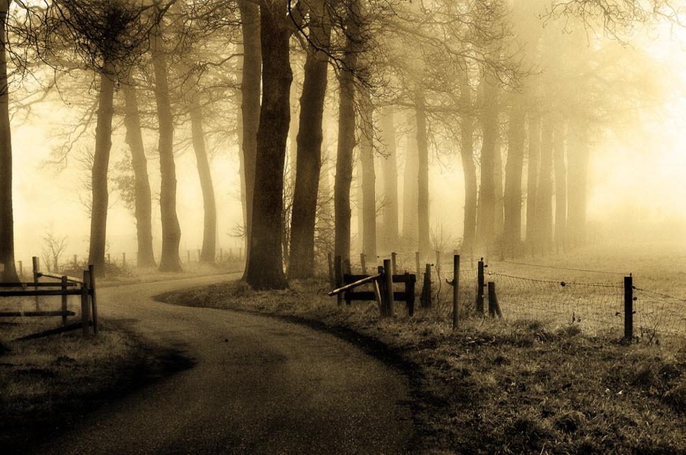 3216 100 изумительных фотографий тумана (часть 2)