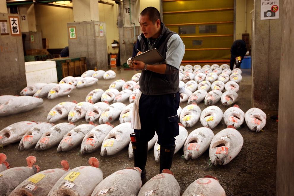 3269 Рыбный рынок Цукидзи