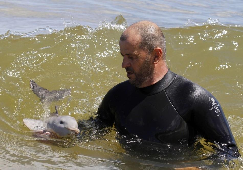 3515 50 лучших фотографий животных за 2011 год